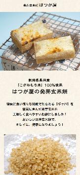 発芽玄米餅のはつが屋